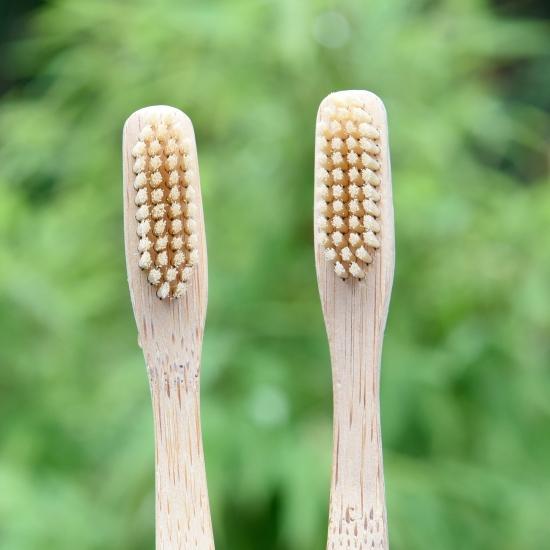 Zwei Holzzahnbürstenköpfe